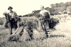 Ampleforth College boys helping the war effort
