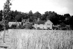 Looking north towards Ledbrooke House and The Terrace c.1945