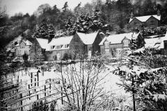 Mrs Rugg's garden c.1955