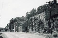 Ivy Cottage c.1954