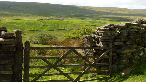 A gate on the moors